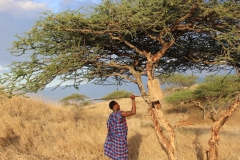 Maasai-Sperrwurf-2