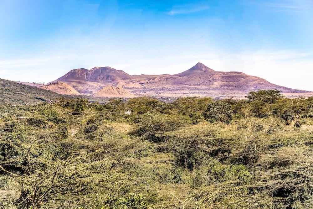 Nature Hillside properties (1)-min